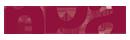 logo-NPAConseil-45